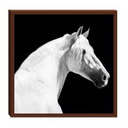 Toile carrée chevaux poulain 28 x 28 cm Cheval passion
