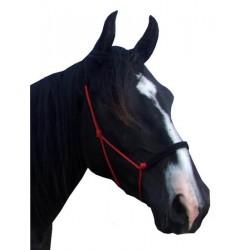 Licol de travail éthologique cheval rembourré Capal - F.r.a