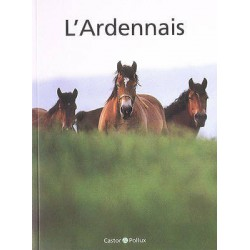 L'Ardennais F Bartelt Castor & Pollux
