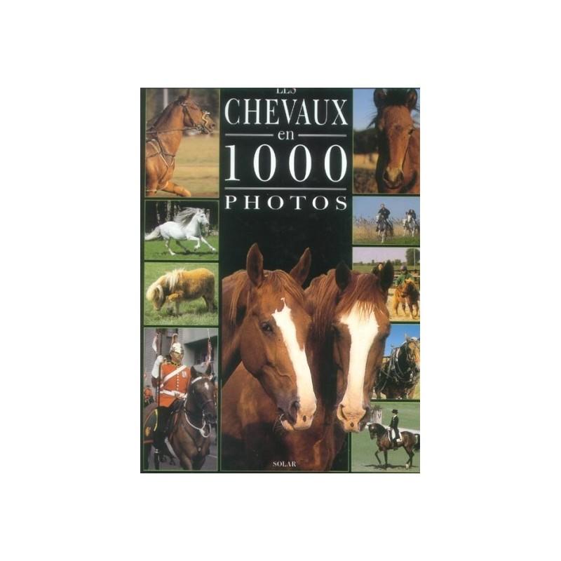 CHEVAUX EN 1000 PHOTOS solar