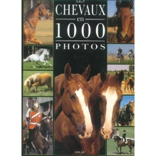 L/CHEVAUX EN 1000 PHOTOS(solar)