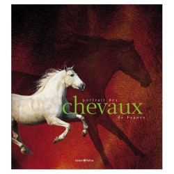 L/PORTRAIT DES CHEVAUX DE FRANCE(castor et pollux )