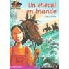 L/CASTOR POCHE-CHEVAL EN IRLANDE(916)