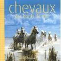 Chevaux des bords de mer Jérôme Garcin Editions Hachette