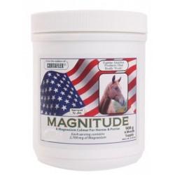 MAGNITUDE poudre 908 g anxiété/magnesium EQUINE AMERICA