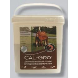 CAL GRO (complément poulains/poulinieres ) 3 kg farnam
