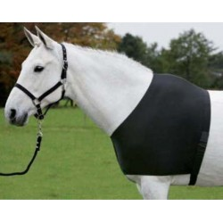 Protection épaules cheval Comfort Vest Waldhausen