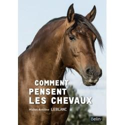 Comment pensent les chevaux Michel-Antoine Leblanc Editions  Belin