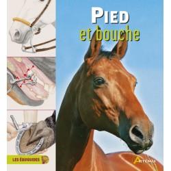 Les Equiguides, Pied et bouche Collectif Editions Artémis