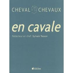 En cavale Sylvain Tesson Editions du Rocher