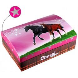 Boîte à bijoux grand modèle Cheval Passion