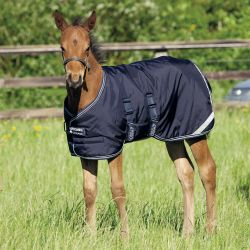 Couverture extérieur 200 g poulain Amigo Foal Rug Horseware