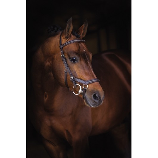 Bridon anatomique Micklem Rambo Competition Deluxe Horseware