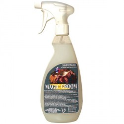 Shampoing sec cheval 650 ml Magic Groom Rekor