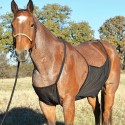 Protection ventrale anti-mouches cheval Belly Guard Cashel