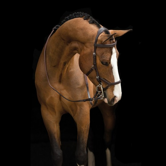 Bridon anatomique Micklem Rambo Competition Original Horseware