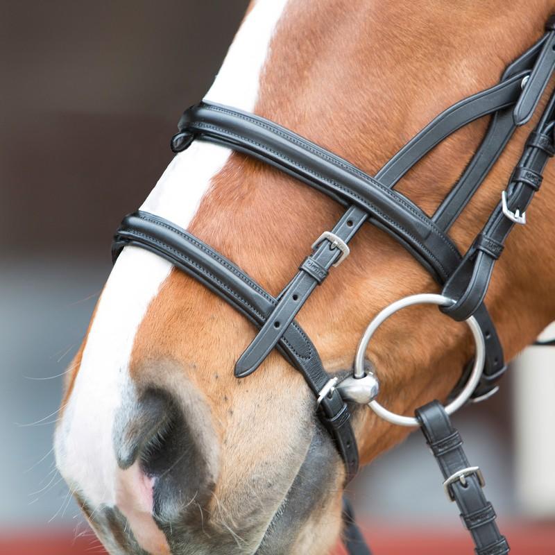 Noir Kieffer Ultrasoft Mode Bridon Harnachement du cheval