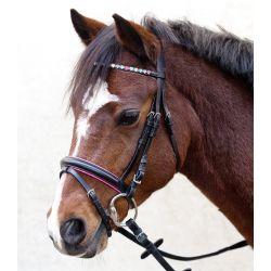 Bridon muserolle combinée poney Sparkling Hearts Star