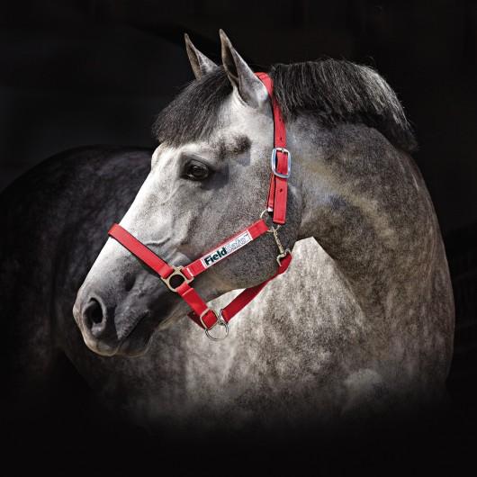 Licol de sécurité Fieldsafe Horseware