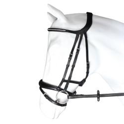 Bridon cuir muserolle combinée têtière anatomique Crown Equestra