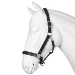 Licol cuir Equestra