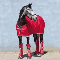 Chemise séchante Amigo jersey cooler Horseware