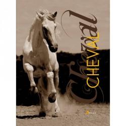 Cheval Emmanuelle Dal'Secco Editions Artémis