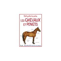 Les chevaux et poneys - Petit guide de poche  Collectif Editions Piccolia