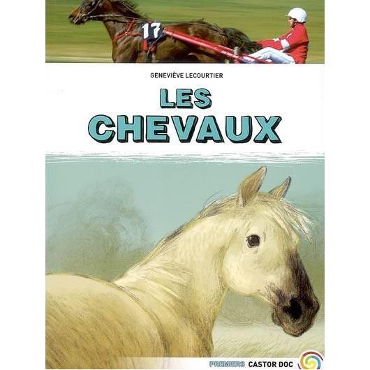 Les chevaux -  Premiers Castor doc Flammarion Geneviève Lecourtier