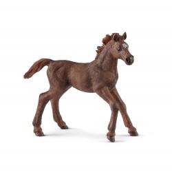 Figurine Poulain Pur-sang Anglais