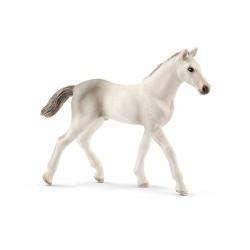 Figurine Poulain Holstein