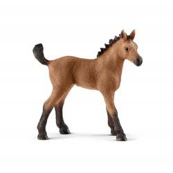 Figurine Poulain Quarter Horse