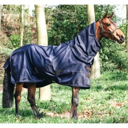 Couverture extérieur cheval 300 g All Weather Kentucky