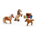 Kit de jeux Famille de minis-Shetlands