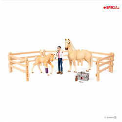 Kit de jeux Box de Soins pour chevaux