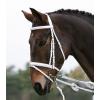 Bridon sans mors cheval