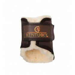 Protège boulet mouton -  Guêtre arrière Solimbra - Kentucky
