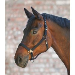 Licol cheval Gloomy double soft - Waldhausen - Equestra