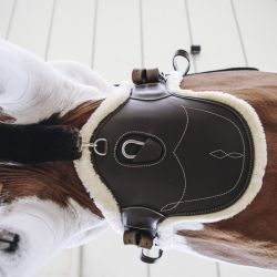 Sangle bavette anatomique courte en mouton - Kentucky