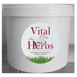 Seau vide 5 litres - Vital Herbs