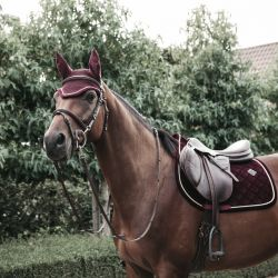 Tapis chabraque Corduroy cheval - Kentucky - Equestra