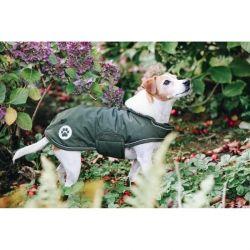 Manteau chien imperméable réfléchissant - Kentucky