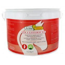 Mix MSM-Glucosamine 2.5 kg