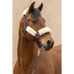 Licol et Longe cheval Rialto Must Have - Harcour