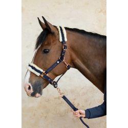 Licol et longe cheval Miguel - Harcour