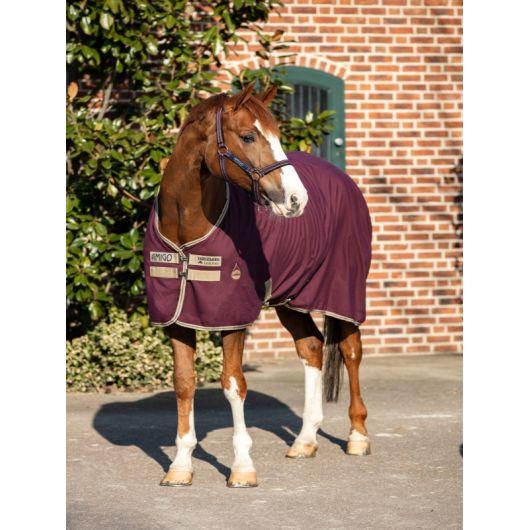 Chemise écurie transport cheval Amigo Stable - Horseware