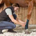Chaussettes de contention cheval Active Compression - Equicrown