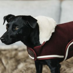 Manteau pour chien Heavy Fleece - Kentucky