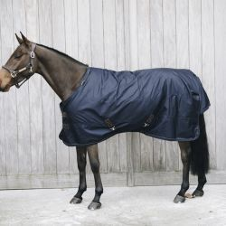 Couverture extérieur cheval 0 g All Weather - Kentucky