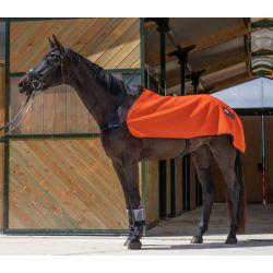 Chemise de récupération cheval Capsular (+1 baume 250ml) - Akhal